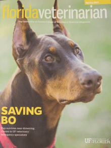 Cover Shot, Spring 2017 Florida Veterinarian