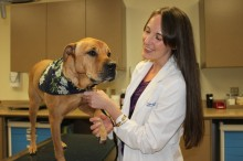 Dr. Valerie Scharf and dog